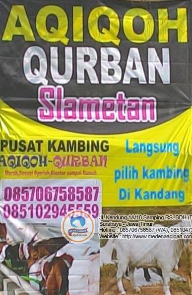 aqiqah surabaya 1 Jasa Aqiqah Surabaya
